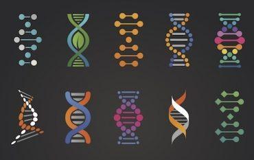 Brand DNA